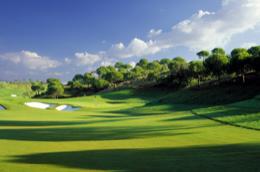 Vinare Golf Tournament 2014